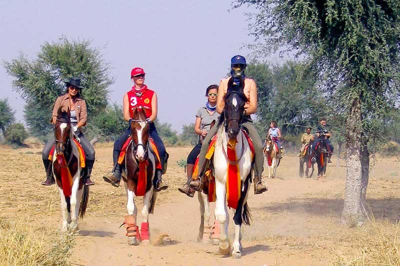 Horse Safari in Rajasthan Tour