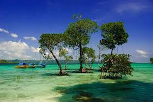 Andaman Holiday Tour