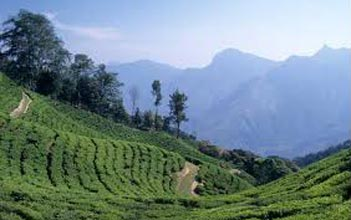 Kerala 6 Nights & 7 Days Tour