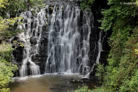 Mangalore - Coorg Tour
