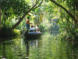 Kerala monsoon Tour Package 5 Nights 6 Days With  Free Ayurvedic Massage