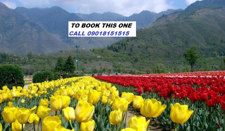 Kashmir Vaishno Devi Tour Package