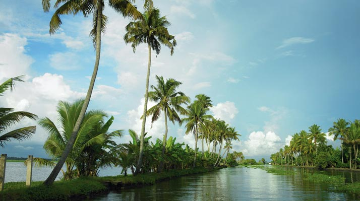 KERALA – COCONUT PACKAGE
