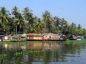 Munnar - Thekkady - Alleppey - Cochin - 5N 6 D Tour