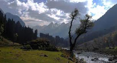 Group Tours / Kashmir-gulmarg-pahalgam-jammu (8 Days / 7 Nights)