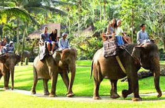 Phuket With Bangkok Tour