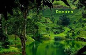 Dooars Tour Packages – Provasin Holidays