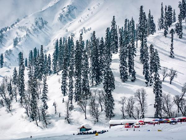 Magnificent Kashmir