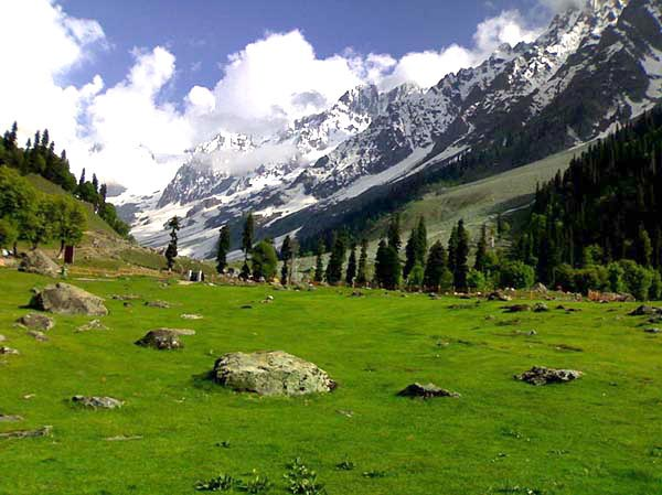 Kashmir Heaven Package