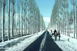 Kashmir Valley View Tour