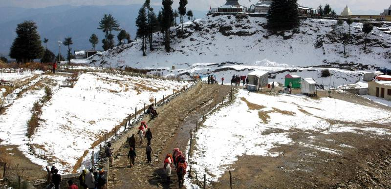Shimla Manali 05 Days Pool Trip
