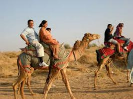 Camel Safari in Rajasthan Tour