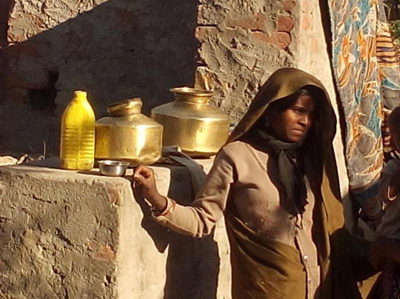 Tribal, Wildlife and Temple Tour of Madhya Pradesh