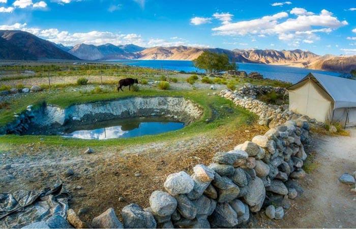Ladakh Photography Tour