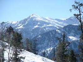 Manali Shimla Honeymoon Packages by Volvo