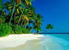 Romantic Goa Tour - Honey Moon Special