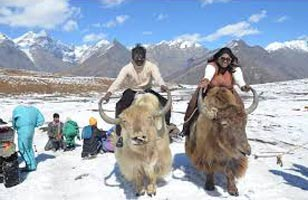 Manali Honeymoon Volvo Package 3 N / 4 D