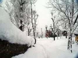 Splended Kashmir Tour