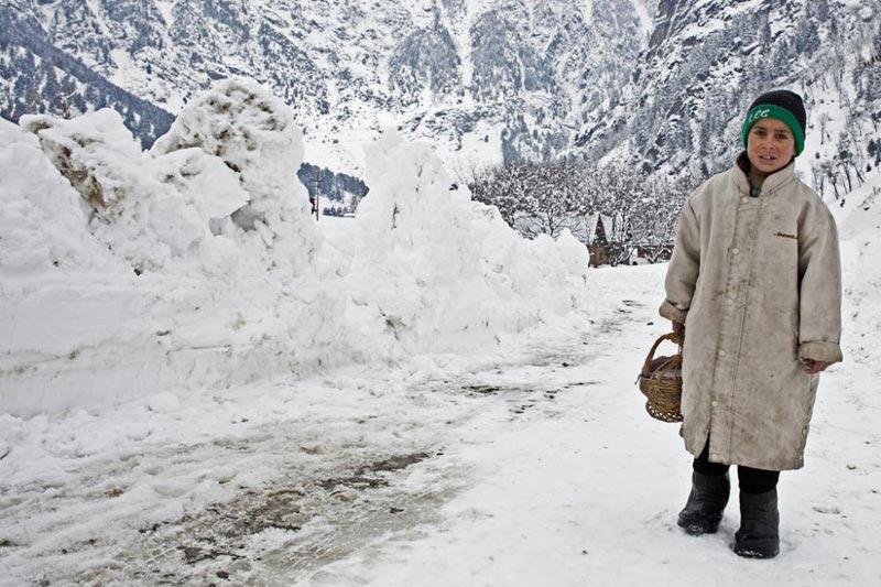 7/8 Days Tour Package Kashmir