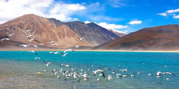 Panorama Ladakh Tour