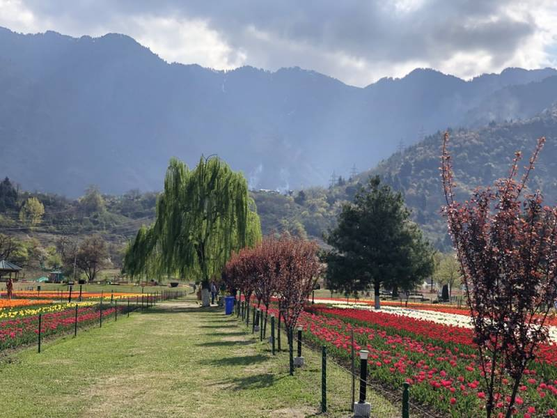 JAMMU SPECIAL TOUR HOTEL ONLY 4 NIGHTS 5 DAYS