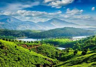 Cochi - Munnar - Thekkdy - Alleppy - Kovalam Tour Package