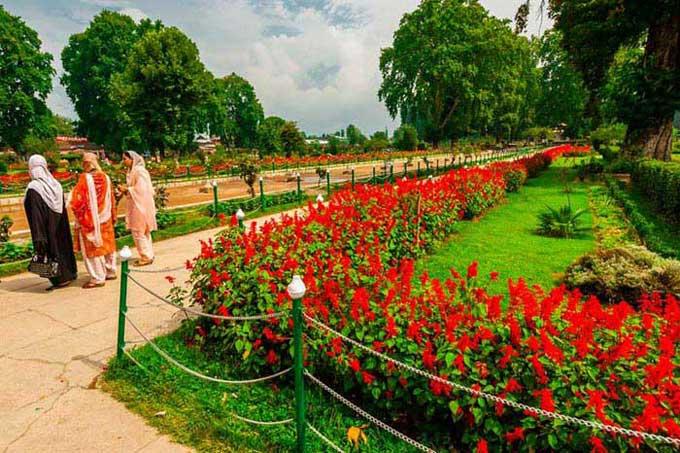 6N7D- Charismatic Kashmir Package