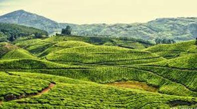 Kerala Kanyakumari Economy Package
