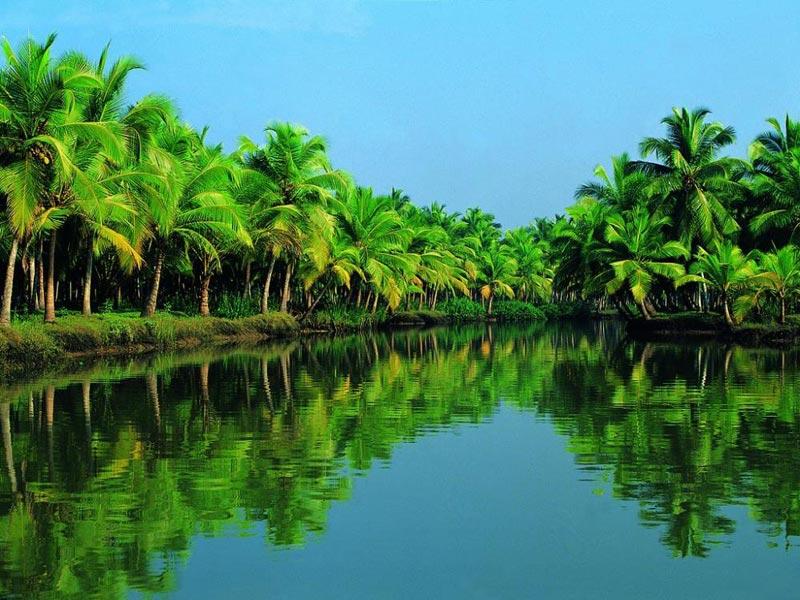 A Short Break to Kerala Tour