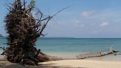5 Nights 6 Days- Beautiful Andaman Tour