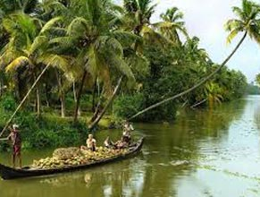 Reasonable Experience In Kerala