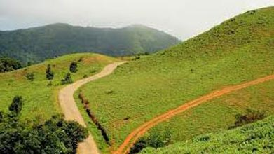 Ooty Coorg Packages