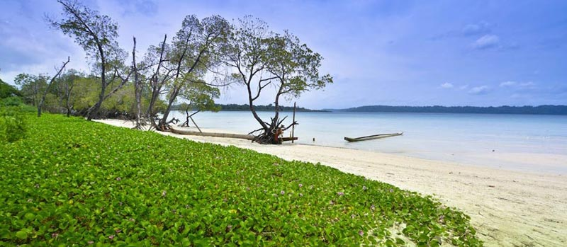Romance in Andaman Tour