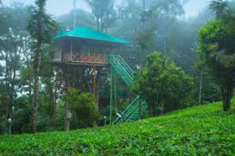 Wayanad Weekend Tour