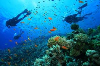 Andaman Mega Island Tour