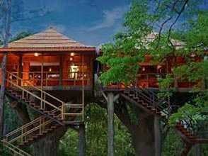 Periyar Tour with Treehouse Tour