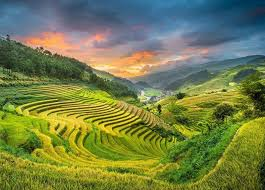 7 Days Tour Hanoi – Ninh Binh - Halong Bay - Sapa