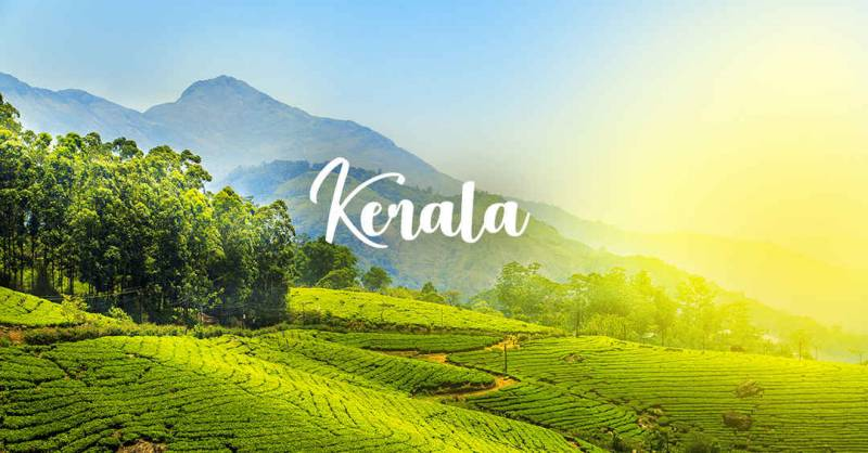 The Green Kerala Tour