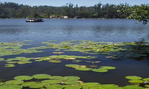 Ooty Kodaikanal for a Couple Tour