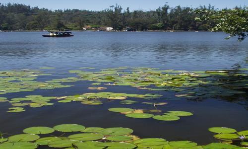 Ooty Kodaikanal for a Couple Tour