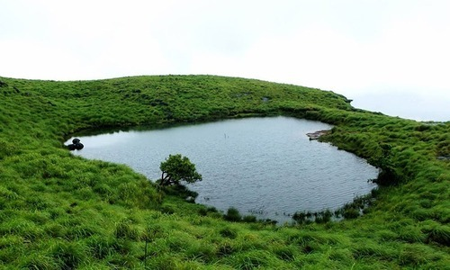 Coorg Wayanad Package