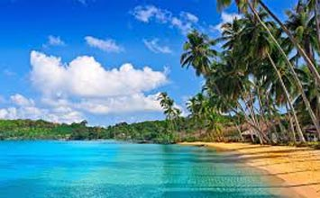Andaman Package Tour 7 Nights And 8 Days
