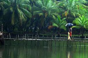 Mysore-Ooty-Coorg Special Tour