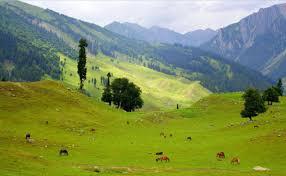 Kashmir Summer Packages 8 Days