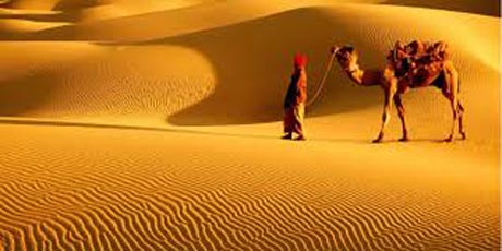 Rajasthan Kings Tour ( 9 Days - 8 Nights ) Back to Tours