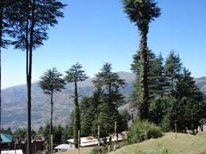 Patnitop Tour with Vaishno Devi
