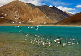Ladakh Bike Tour Package
