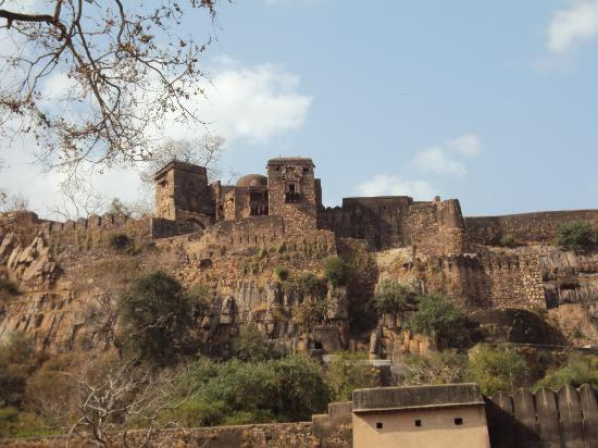 Ranthambore with Rajasthan