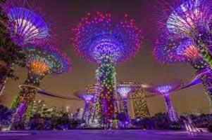 Singapore Tour 8d/7n