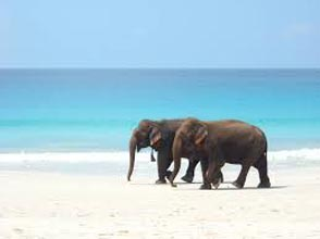 Erotic Blue Sea Trip - Itinerary 5 Days 4 Night